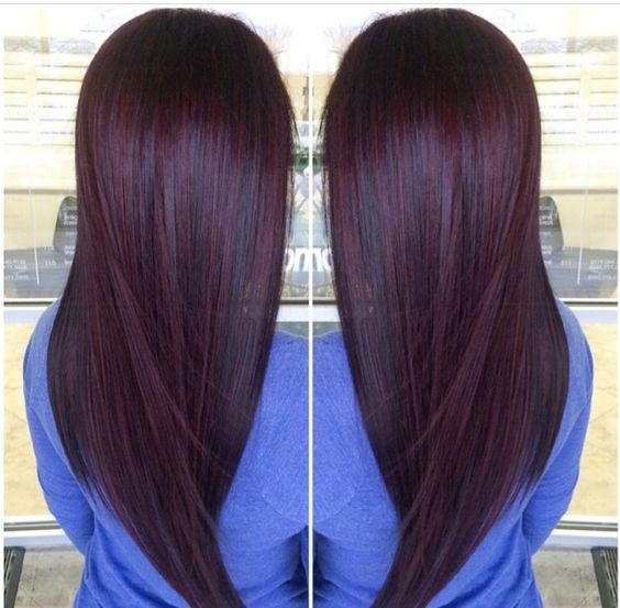 Rich dark hair (L3) with deep red highlights